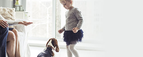 Little girl looking down at a beagle