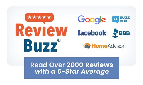 Review Buzz 1500 reviews