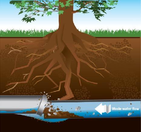 cost-unclog-main-drain